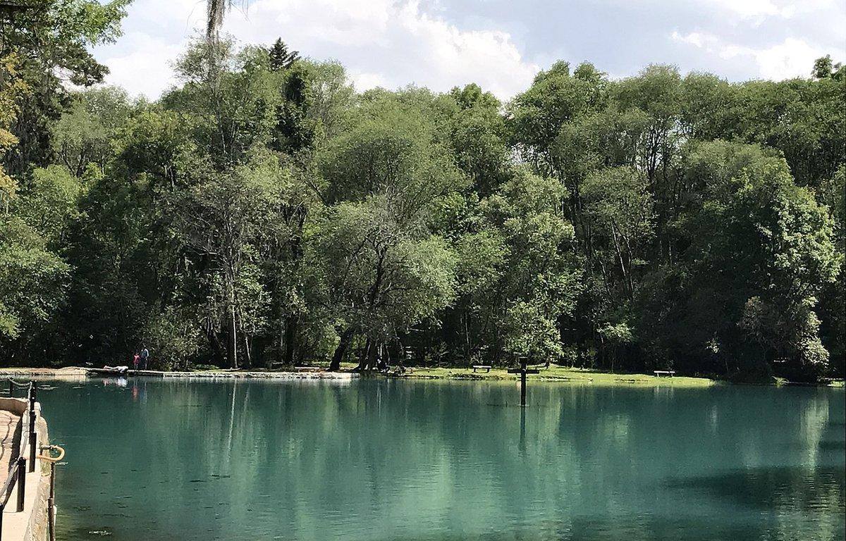 Bosque de las Truchas