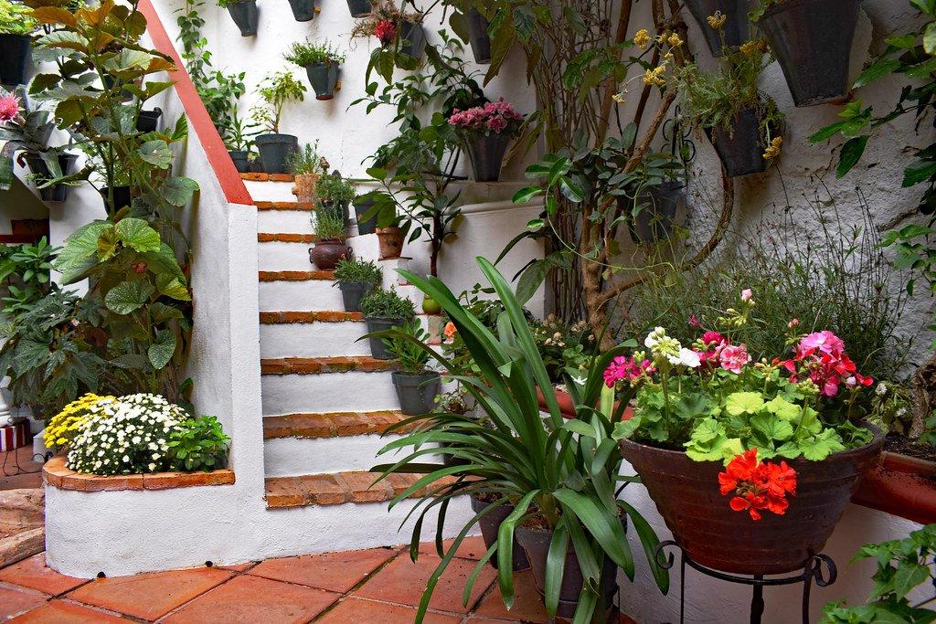 Escalera con flores del patio San Basilio.
