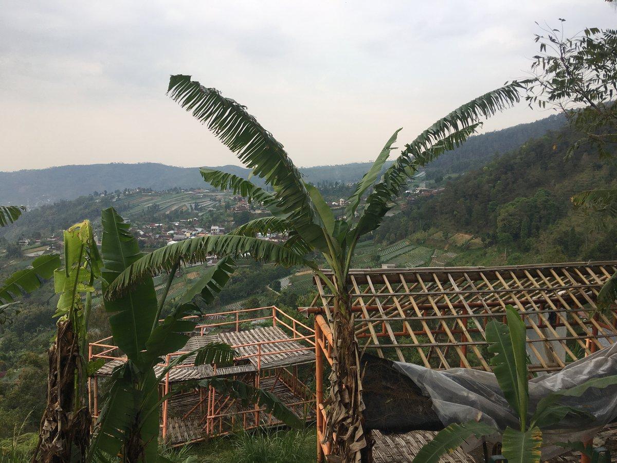 Construcciones bambú cerca de Candi Sukuh