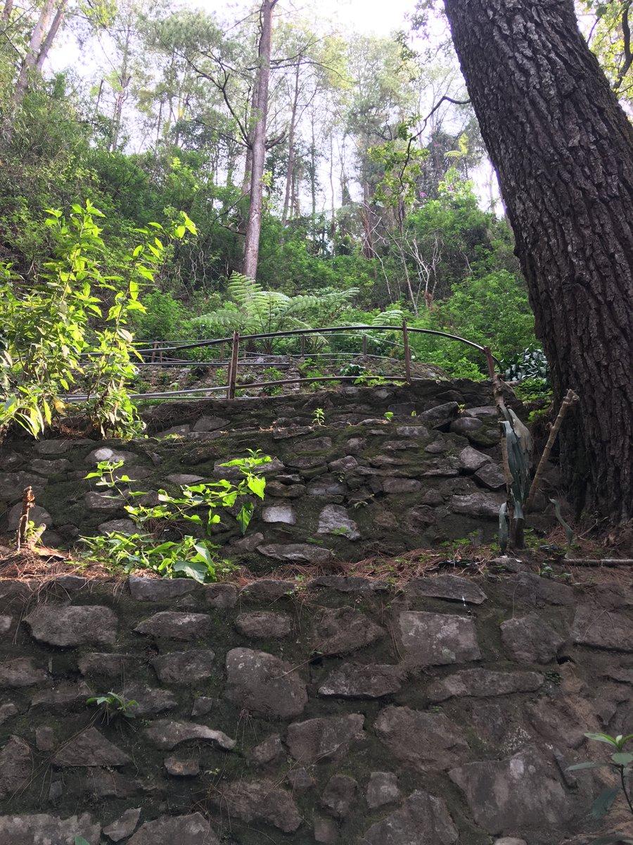 Escaleras vistas des de abajo