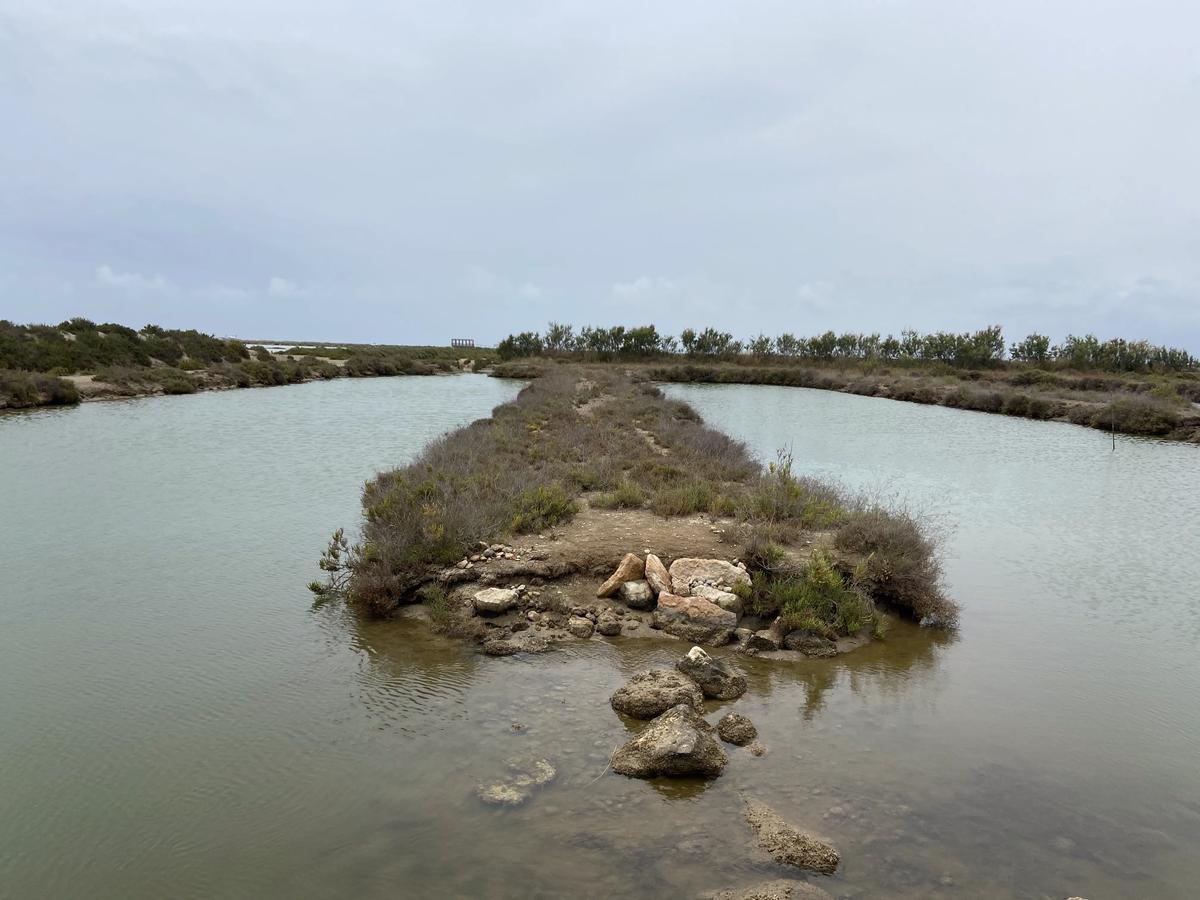 Laguna en la que vive el Farfet, pez en peligro de extinción.