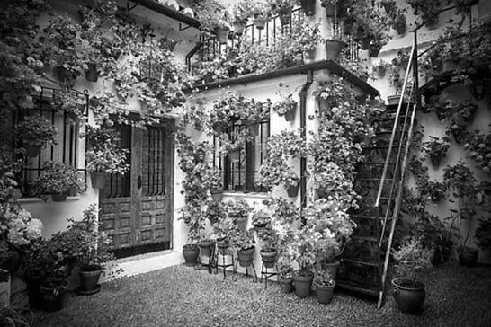 Foto en blanco y negro de los patios de Córdoba.