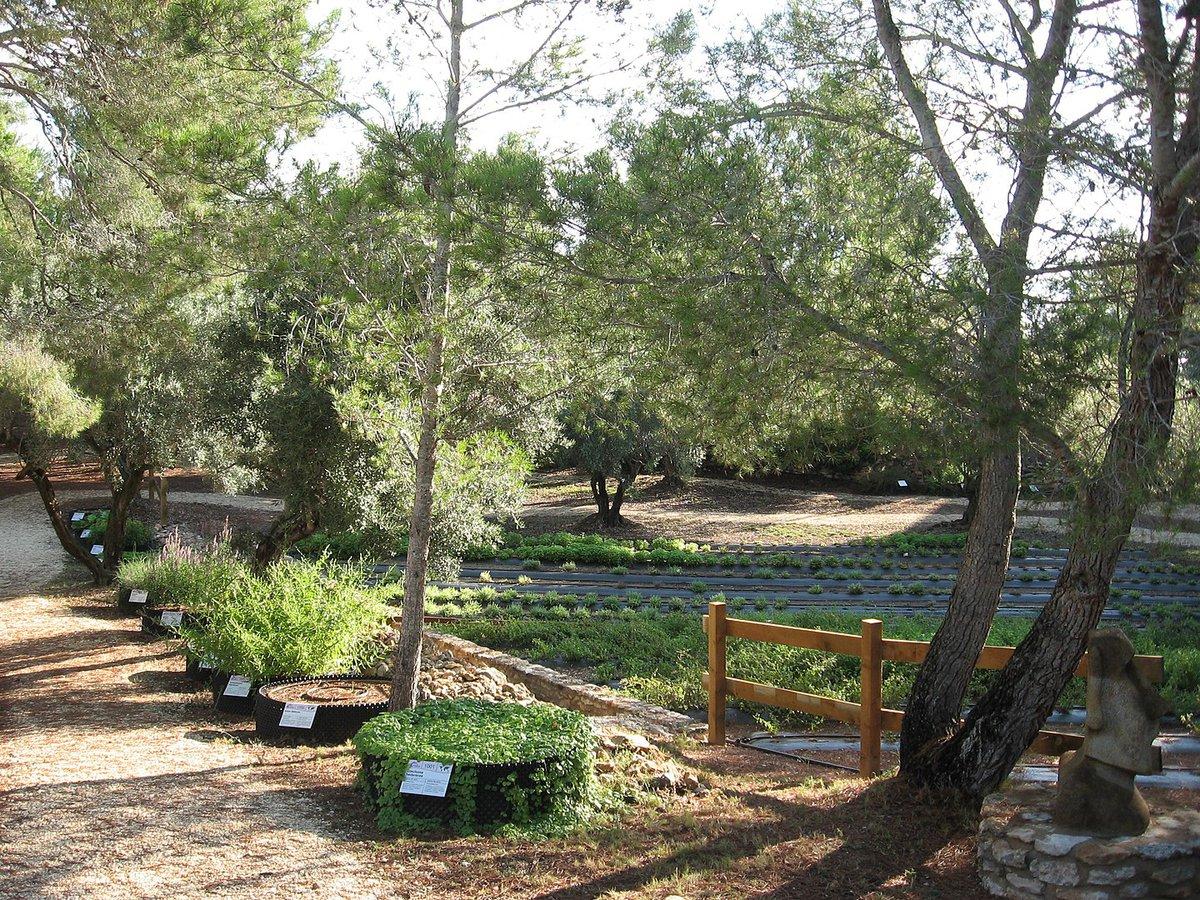 Una de las zonas del agrojardín Ecoherbes.
