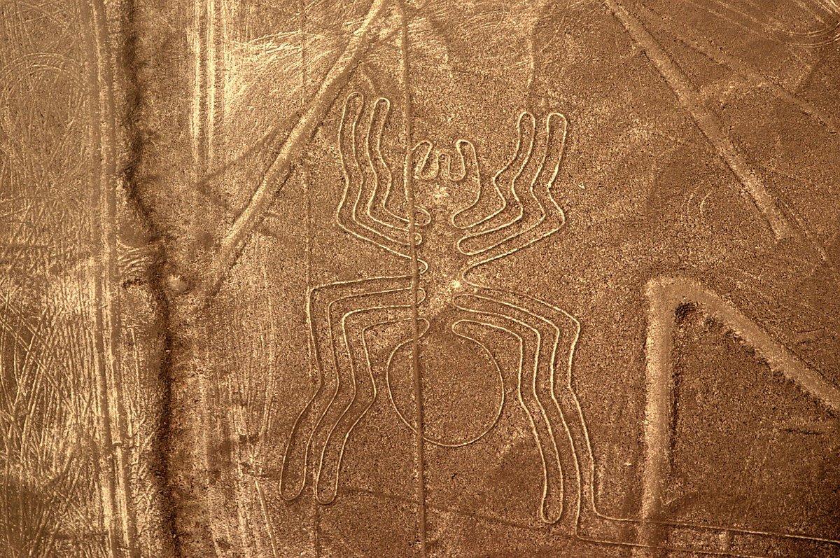 Araña de Nazca