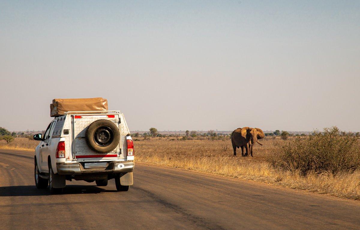 que-ver-botswana.jpg