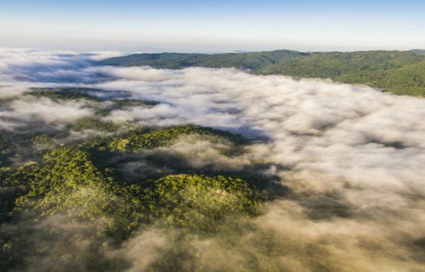 reserva-biosfera-el-cielo.jpg