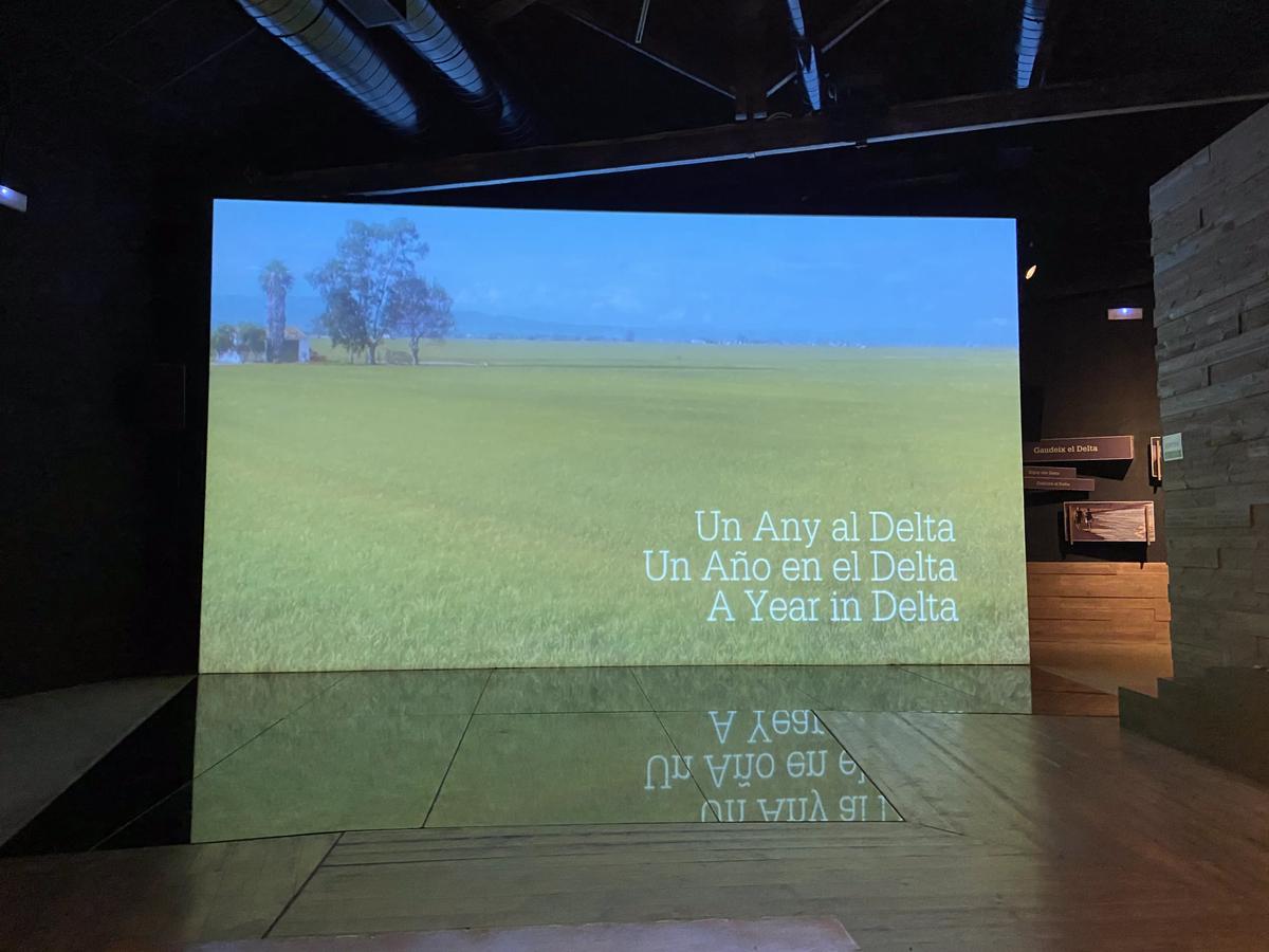 Vídeo en la exposición de MónNatura