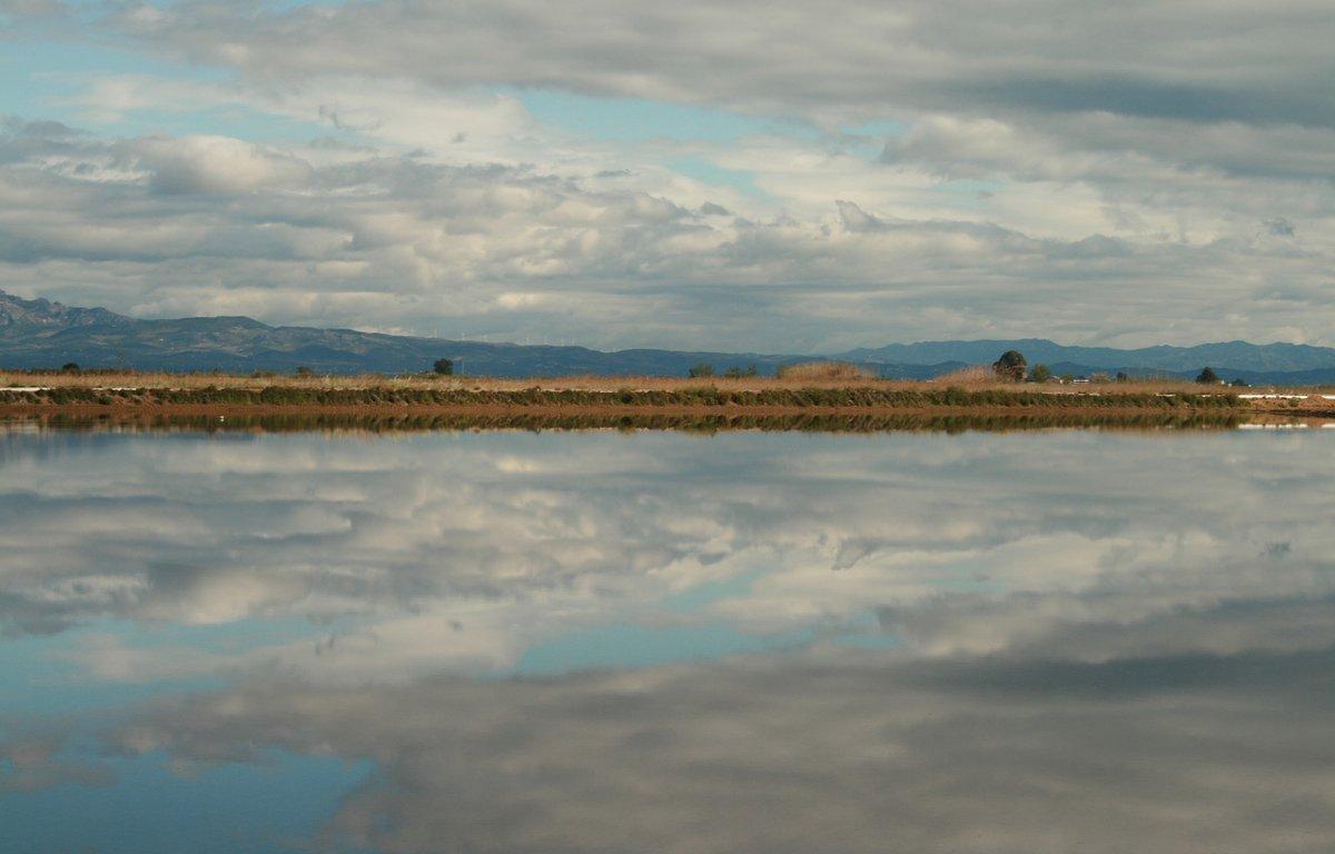 Visitar el Delta del Ebro.