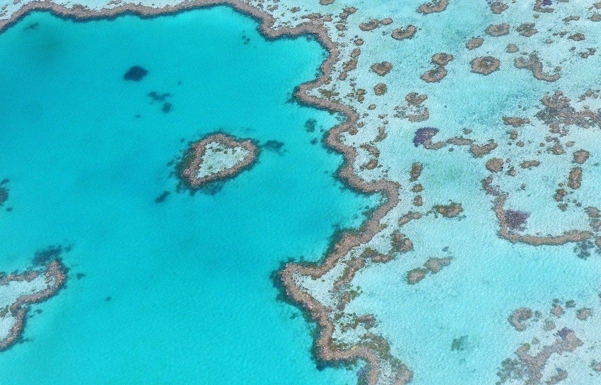 visitar-gran-barrera-coral.jpg